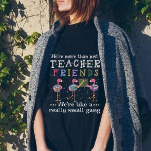 We're More than Just Teacher Friends We're Like A Really Small Gang Flamingo tank top