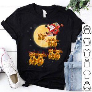 Awesome Christmas Reindeer Dachshund Dog Shirts Funny Christmas Gift shirt