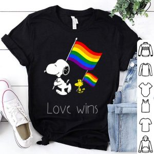 Love Wins LGBT Gay Pride With Rainbow Flag Shirt