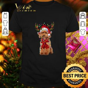 Pretty Poodle Reindeer Christmas shirt