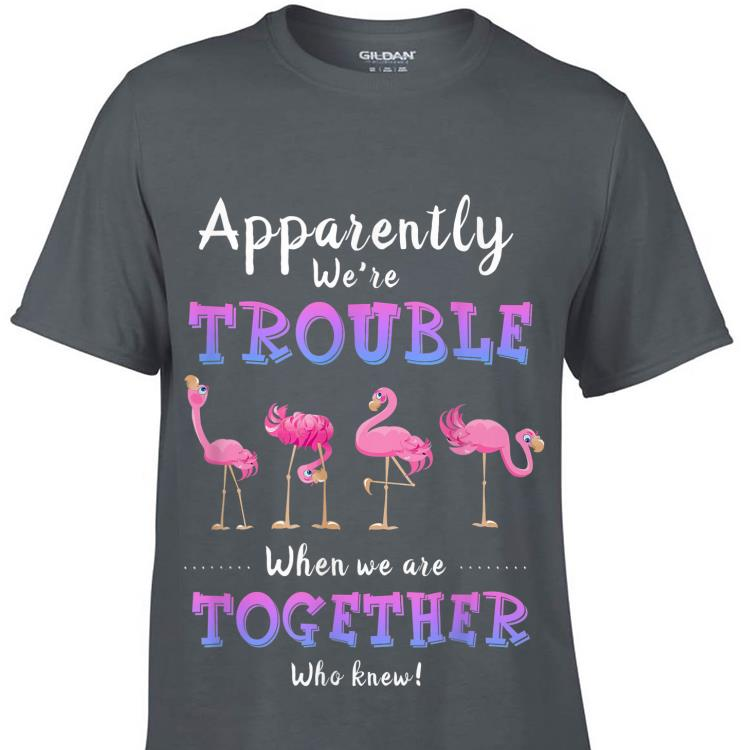 Apparently We Re Trouble When We Are Together Flamingo