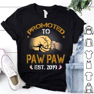 Promoted To Paw Paw Est 2019 New Dad Fathers Day shirt
