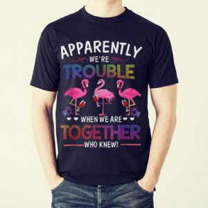 Original Apparently We're Trouble When We are Together Who Knew Wine Flamingo shirt