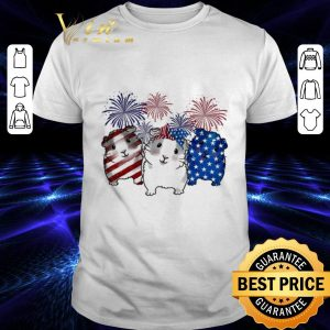 Nice Fireworks Guinea Pigs 4th of July independence day American flag shirt