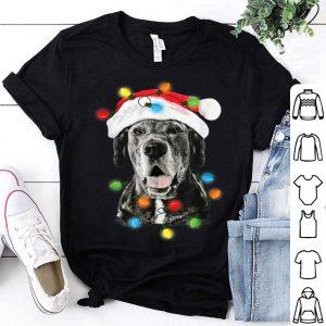 Nice Funny Santa Great Dane Christmas Lights Dog Dad Mom Xmas sweater