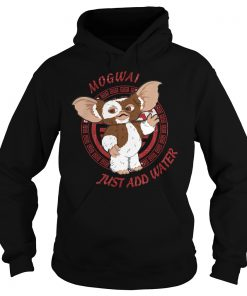 Mogwai Just Add Water Hoodie 1