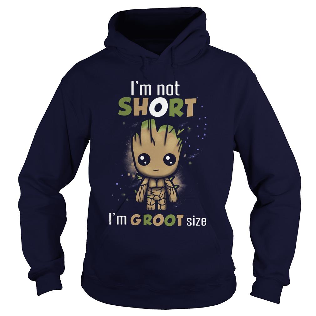 Im Not Short Im Groot Size Hoodie