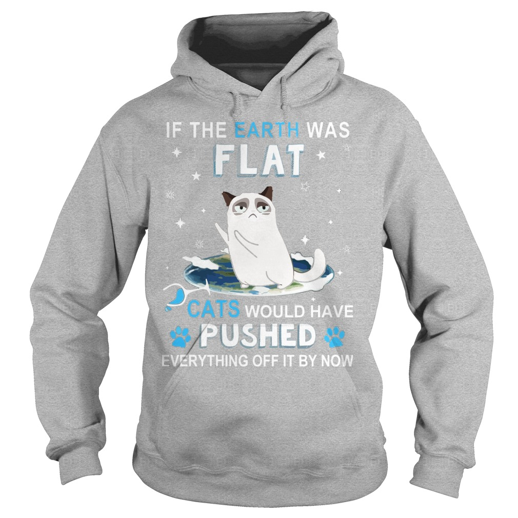 Earth Flat Cats Pushed Everything Off Now Hoodie