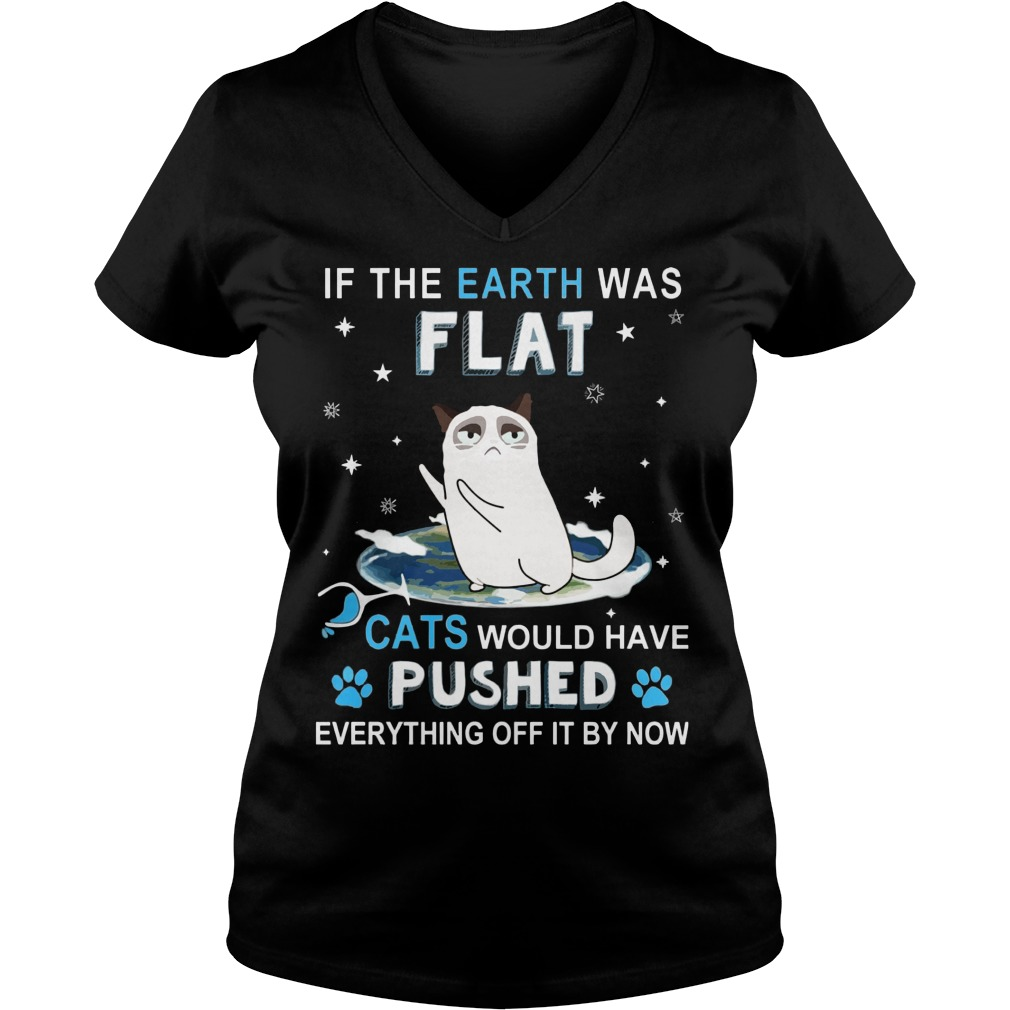 Earth Flat Cats Pushed Everything Off Now Vneck