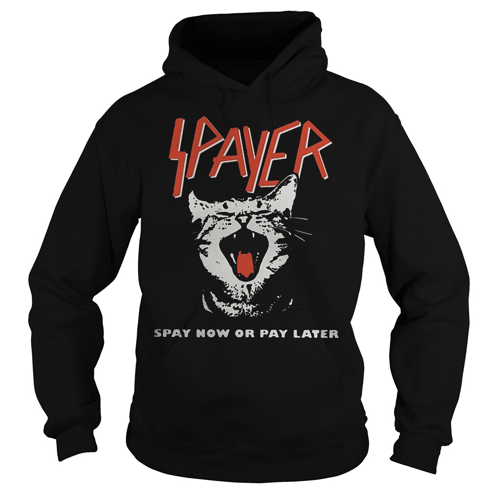 Spayer Spay Now Or Pay Later Cat Hoodie