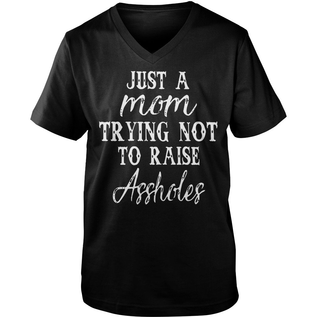 Just A Mom Trying Not To Raise Assholes T-Shirt Guys V-Neck