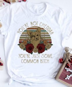 Official Sunset Fox You Re Not Cheddar You Re Just Some Common Bitch Shirt 1 1.jpg