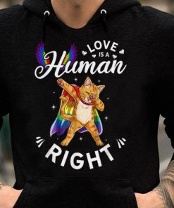 Premium Cat Love Is A Human Right Gay Pride Support LGBT shirt 2 1 247x296 - Premium Cat - Love Is A Human Right Gay Pride Support LGBT shirt