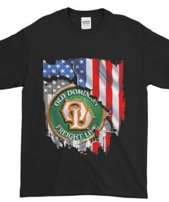 Funny Awesome Funny Funny Old dominion freight line american flag shirt 1 1 247x296 - Funny Awesome Funny Funny Old dominion freight line american flag shirt