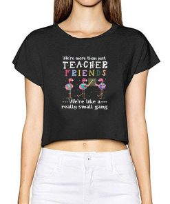 Funny Flamingos we re more than just teacher friends we re like a shirt 2 1 247x296 - Funny Flamingos we're more than just teacher friends we're like a shirt