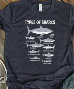 Hot Educational Ocean Types Of Sharks And Their Size shirt 1 1 247x296 - Hot Educational Ocean Types Of Sharks And Their Size shirt