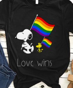Premium Love Wins Funny LGBT Gay Pride With Rainbow Flag shirt 1 1 247x296 - Premium Love Wins Funny LGBT Gay Pride With Rainbow Flag shirt
