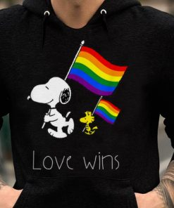 Premium Love Wins Funny LGBT Gay Pride With Rainbow Flag shirt 2 1 247x296 - Premium Love Wins Funny LGBT Gay Pride With Rainbow Flag shirt