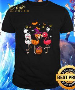 Hot Flamingos happy halloween shirt 1 1 247x296 - Hot Flamingos happy halloween shirt