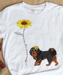 Official Sunflower You Are My Sunshine Tibetan Mastiff shirt 1 1 247x296 - Official Sunflower You Are My Sunshine Tibetan Mastiff shirt