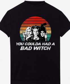 Pretty Hocus Pocus You Coulda Had A Bad Witch Vintage Sunset shirts 1 1 247x296 - Pretty Hocus Pocus You Coulda Had A Bad Witch Vintage Sunset shirts
