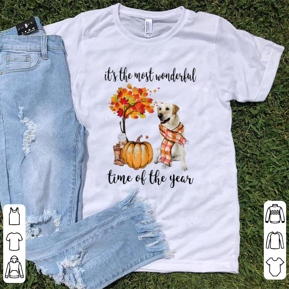 Pretty It's The Most Wonderful Time Of The Year Labrador Pumpkin shirt
