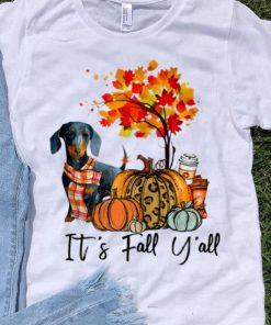Nice It s Fall Y all Dachshund Autumn Dog Pumpkin shirt 1 1 247x296 - Nice It's Fall Y'all Dachshund Autumn Dog Pumpkin shirt