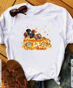 Pretty Dachshunds on autumn pumpkin halloween truck shirt 1 1 247x296 - Pretty Dachshunds on autumn pumpkin halloween truck shirt