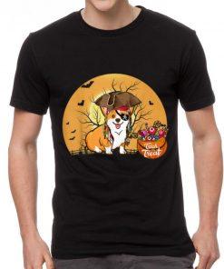 Pretty Pirate Corgi Halloween Costume shirt 2 1 247x296 - Pretty Pirate Corgi Halloween Costume shirt