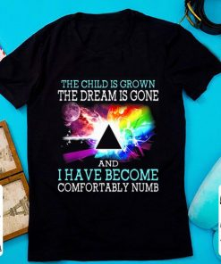 Pretty The Child Is Grown The Dream Is Gone And I Have Become Comfortably Numb Pink Floyd shirt 1 1 247x296 - Pretty The Child Is Grown The Dream Is Gone And I Have Become Comfortably Numb Pink Floyd shirt