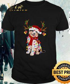 Nice Aussie gorgeous reindeer Christmas shirt 1 1 247x296 - Nice Aussie gorgeous reindeer Christmas shirt