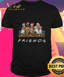 Pretty Girl and Dogs Friends Christmas shirt 1 1 247x296 - Pretty Girl and Dogs Friends Christmas shirt