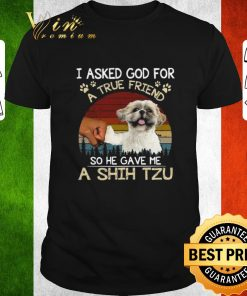 Hot I ask God for a true friend so he gave me a Shih Tzu vintage shirt 1 1 247x296 - Hot I ask God for a true friend so he gave me a Shih Tzu vintage shirt