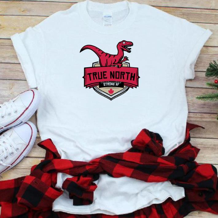 We True North Raptors Dinosaur Toronto Basketball Team shirt