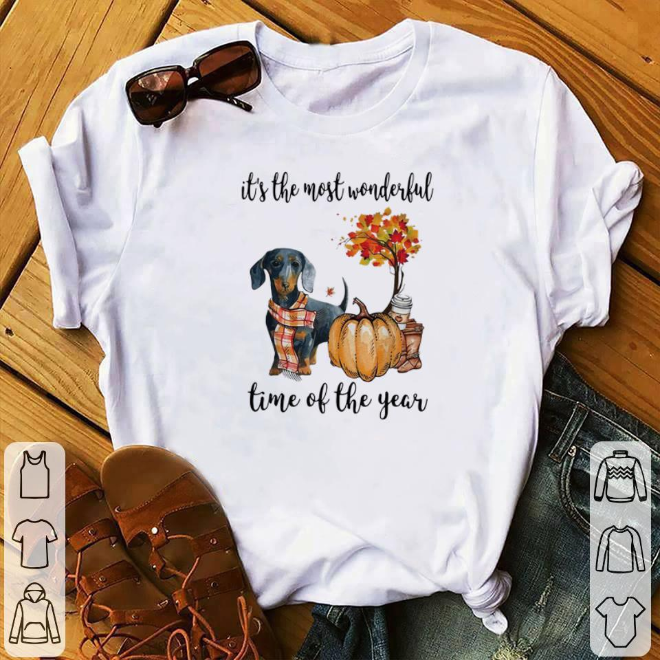 Awesome Dachshund it's the most wonderful time of the year shirt