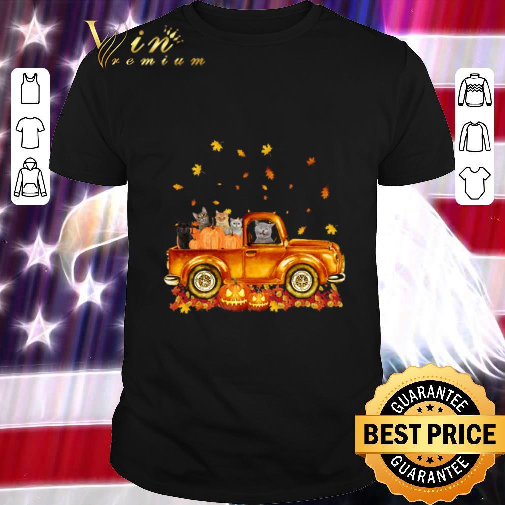 Hot Cats pumpkin car halloween shirt