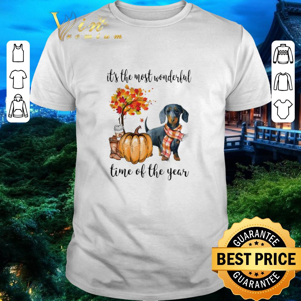 Pretty Dachshund it's the most wonderful time of the year Autumn shirt