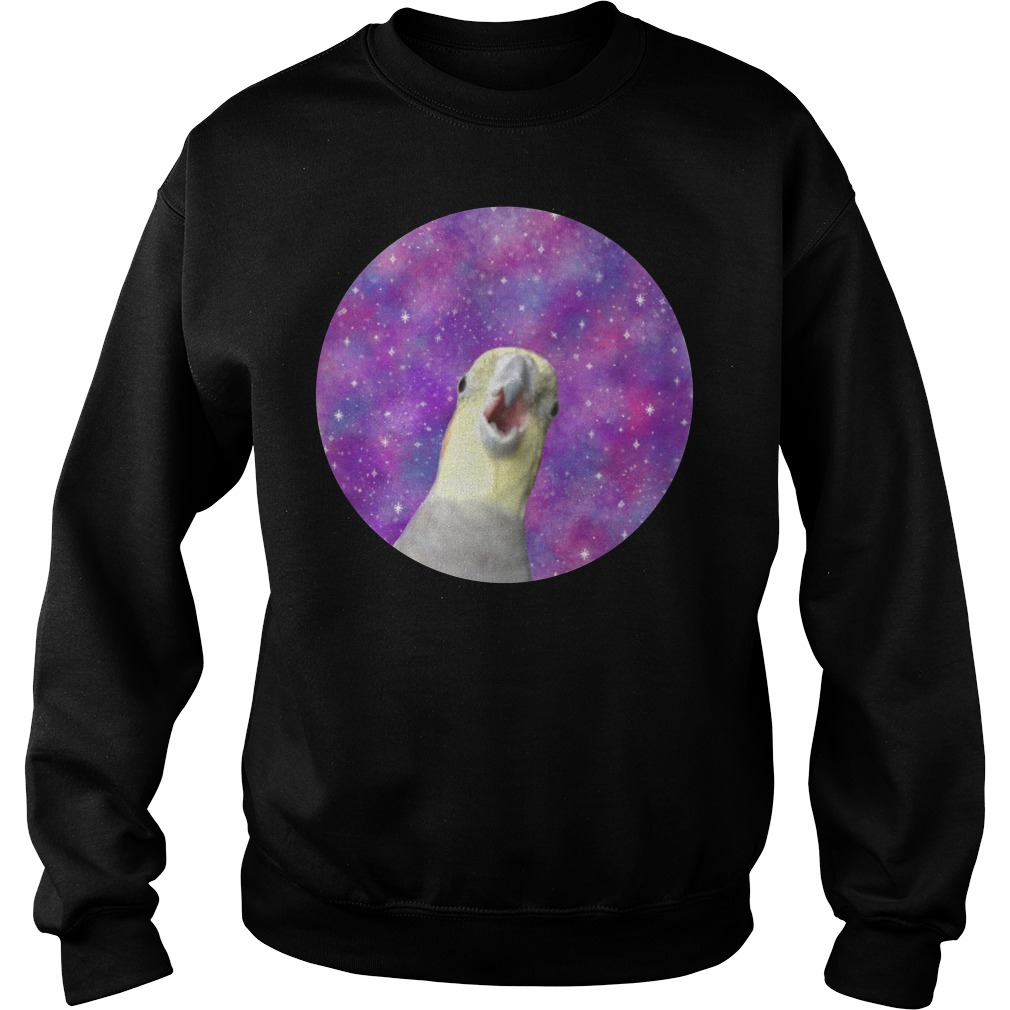 Cosmic Honk Alex The Honking Bird Sweater