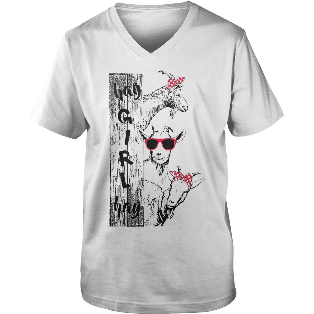 Farmer Girl Hay Girl T-Shirt Guys V-Neck