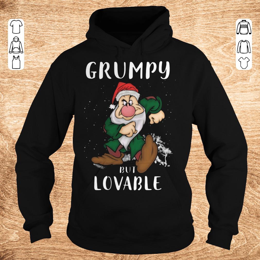 Nice Grumpy but lovable Shirt Hoodie