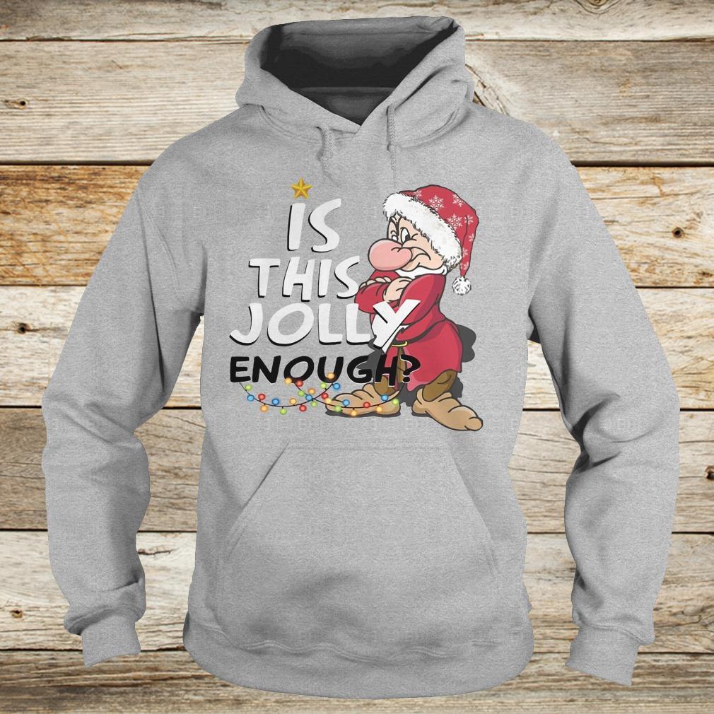 Premium Is this jolly enough shirt Hoodie