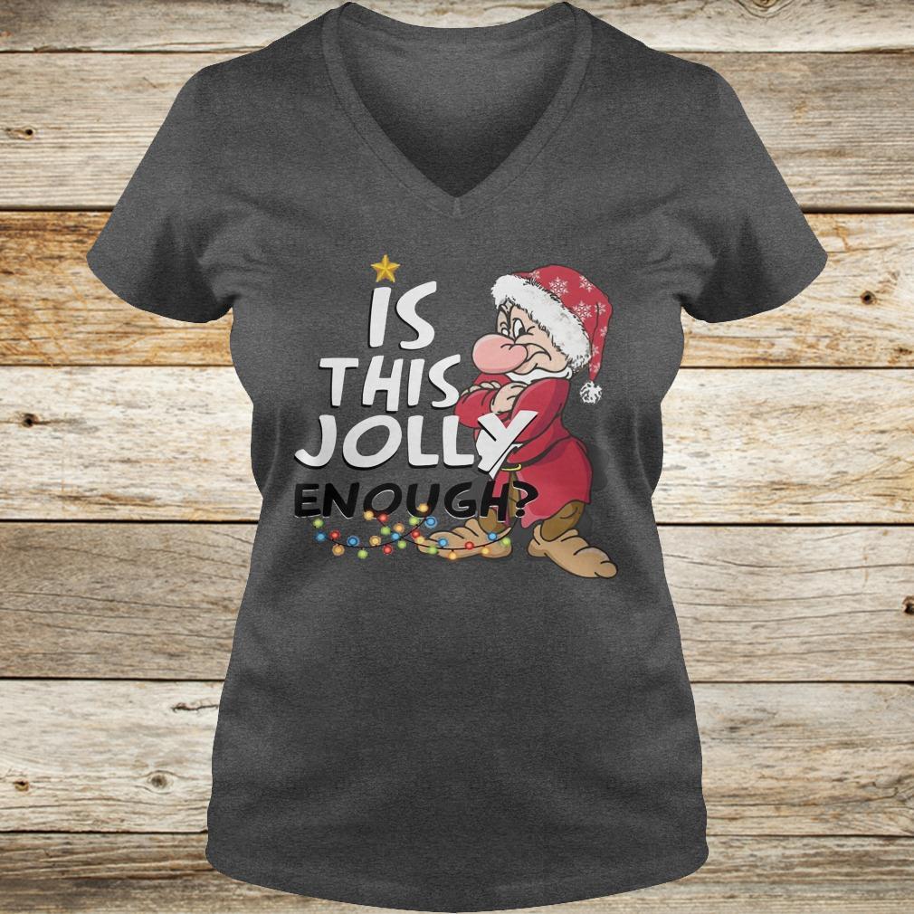 Premium Is this jolly enough shirt Ladies V-Neck