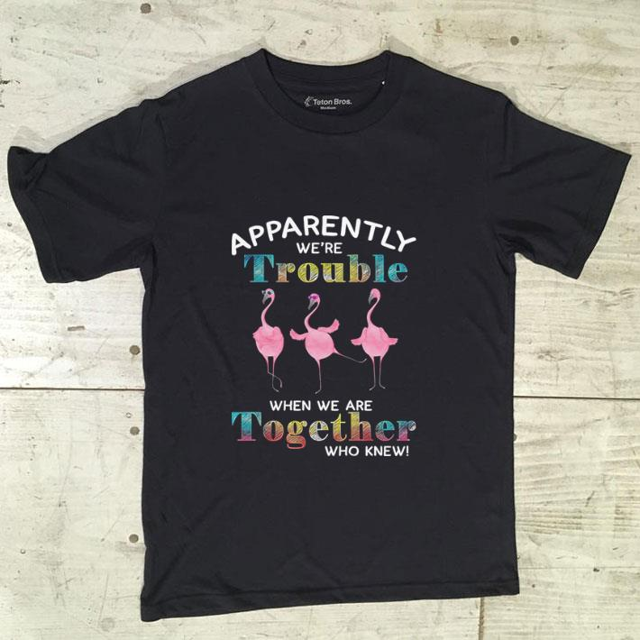 Official Flamingos Apparently We Re Trouble When We Are Together Who Knew Shirt 1 1.jpg
