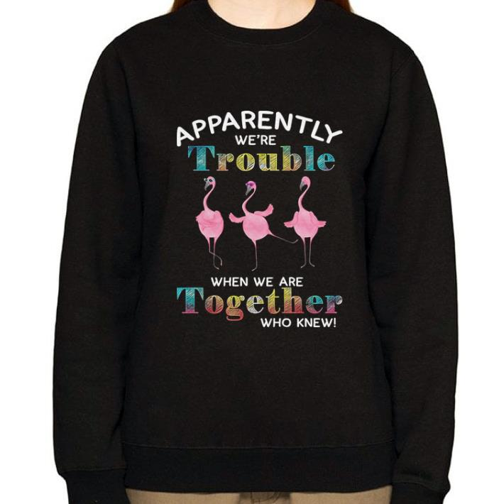 Official Flamingos Apparently We Re Trouble When We Are Together Who Knew Shirt 3 1.jpg