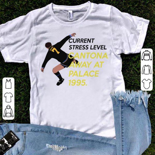 Eric Cantona Current stress level Cantona away at palace 1995 shirt