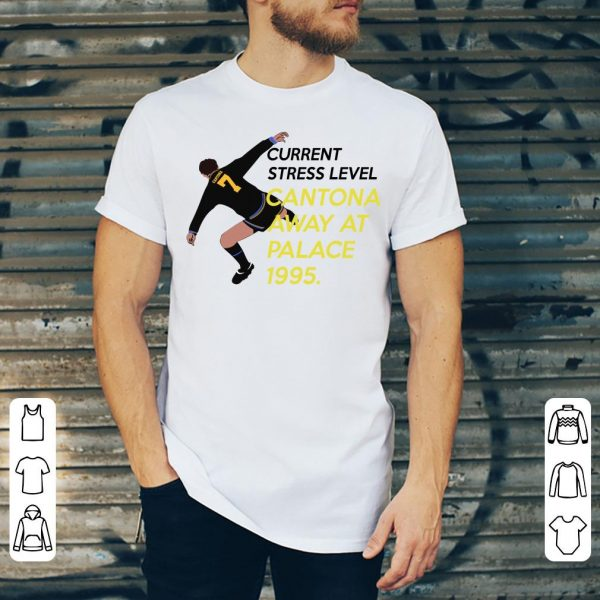 Eric Cantona Current stress level Cantona away at palace 1995 shirt