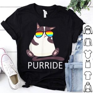 Purride LGBT Cat Gay Lesbian Pride Shirt
