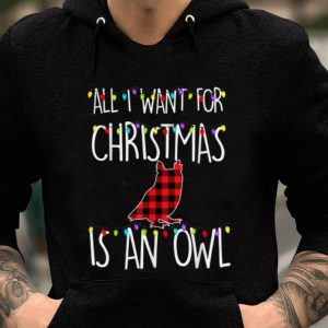 Awesome All I Want For Christmas Is An Owl Animal Xmas Gift sweater