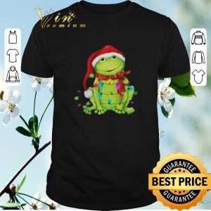 Funny Frog Merry And Bright Christmas shirt sweater