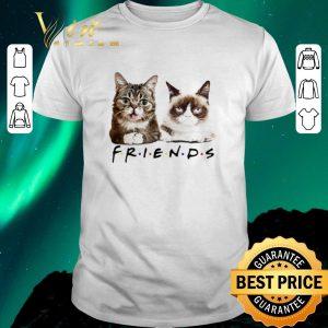 Official Lil Bub Friends Cats Grumpy shirt sweater